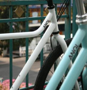 Angl Bike photo 15