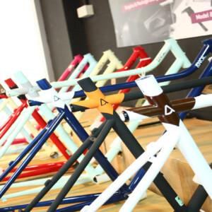 Angl Bike photo 9