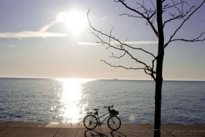 bicycle sunshinewtmk
