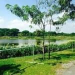 Khlong Sam Wa District Bike Park Gets a New BMX Track