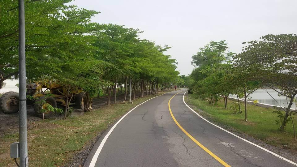 Park 1 cycle lane