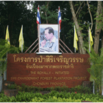 Siri Charoenwat Forest Bicycle Path in Chonburi Province