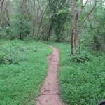 Khao Mai Kaeo Mountain Bike Trails