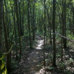 Wat Suwankhiri – Chachoengsao Mountain Bike Trail