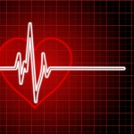 Heart Rate Training Basics