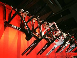 Bike Zone Ceepo frame displaywtmk