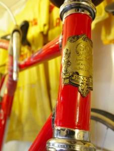 THE CYCLIST PERSONA 6T
