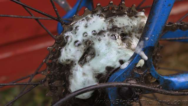Bicycle-Spring-Cleaning 2