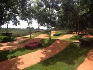 Singha bike park 4