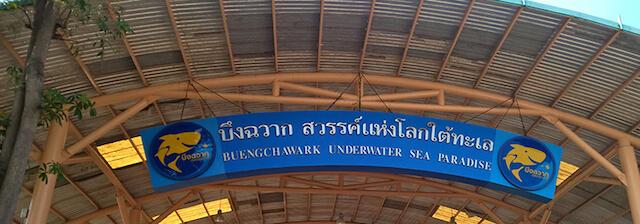Bungchawak Auquarium sign