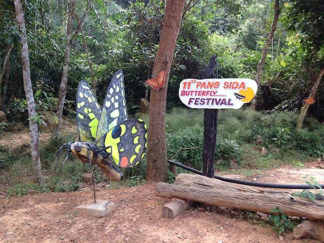 Pang Sida Butterfly Festival