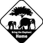 Top Pick Event: Bike for Elephants 2017